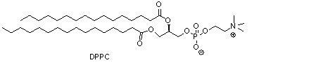 二棕榈酰磷脂酰胆碱(DPPC)
