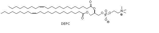 二芥酰基磷脂酰胆碱(DEPC)