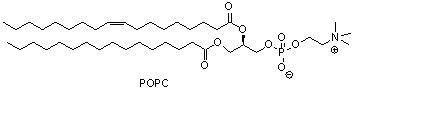 1-棕榈酰基-2-油酰基卵磷脂