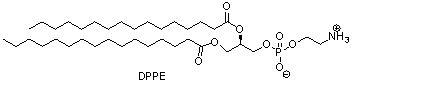 二棕榈酰基磷脂酰乙醇胺(DPPE) (https://www.shochem.cn/)  第1张
