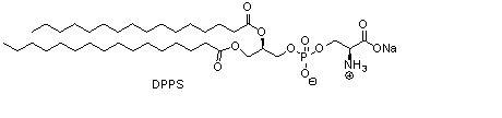 二棕榈酰基磷脂酰丝氨酸钠(DPPS)