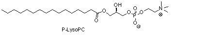棕榈酰溶血卵磷脂(P-LysoPC)
