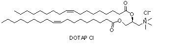 (2,3-二油氧基丙基)三甲基氯化铵(DOTAPcl)