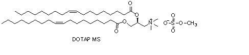 (2,3-二油酰基-丙基)-三甲胺硫酸盐(DOTAPms)