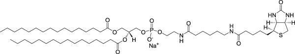 二棕榈酰磷脂酰乙醇胺-N-生物素钠盐