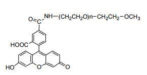 甲氧基聚乙二醇-荧光素