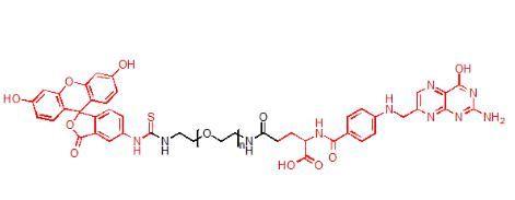 荧光素-聚乙二醇-叶酸