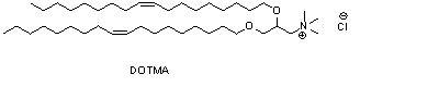 1,2-双十八烯氧基-3-甲基铵丙烷氯盐(DOTMA)