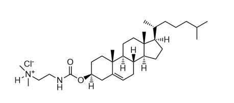 胆固醇基 3β-N-氨基乙基氨基甲酸酯 盐酸盐