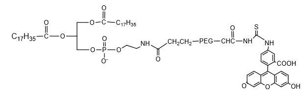二硬酯酰乙醇胺-聚乙二醇2000-荧光素 (https://www.shochem.cn/)  第1张