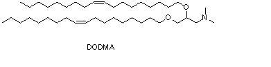 1,2-二油醇-3-二甲基氨基-丙烷(DODMA) (https://www.shochem.cn/)  第1张